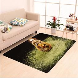 Sophiehome skid Slip rubber back antibacterial Area Rug ch