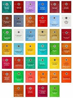 Stash Tea Bags Sampler Assortment Includes Mints  by Variety